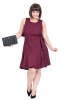 Burgundy Fit & Flare Party Dress