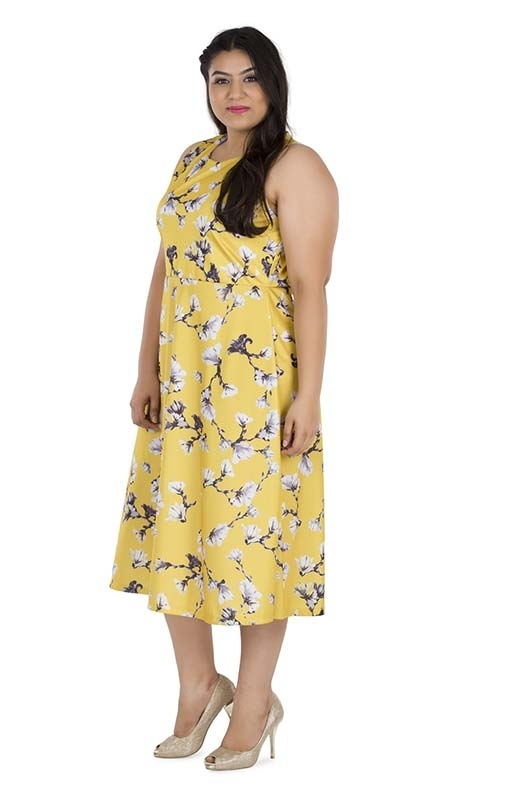 Soft Floral Flared Dress